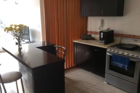 DEPARTAMENTO  COMPLETO EN LAS ÁGUILAS - Ciudad de México - Apartment