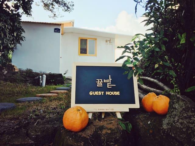뀰밭게스트하우스 - Taepyeong-ro, Seogwipo-si - Gästhus