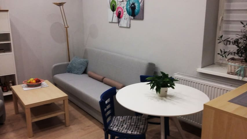 Apartment for COP 24 - only 30 km