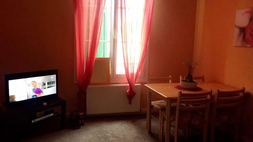 Appartement proche centre ville - Troyes - Apartment