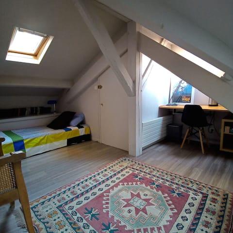 Rooftop room in Paris