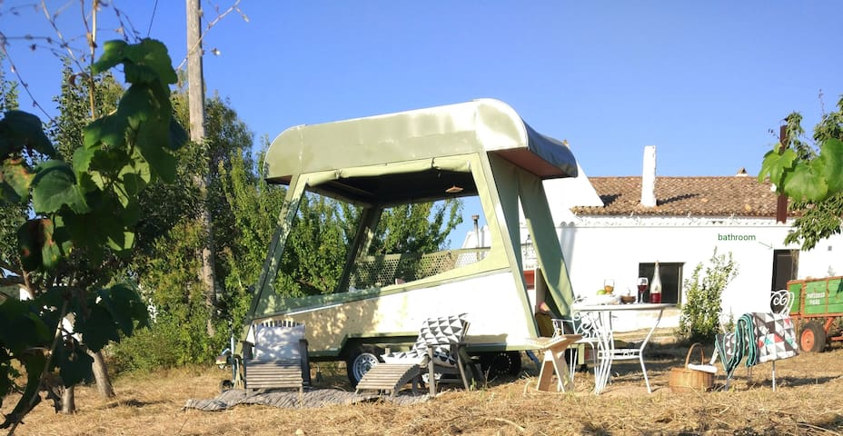 Float in the vineyards in PINEA mobile eco-caravan