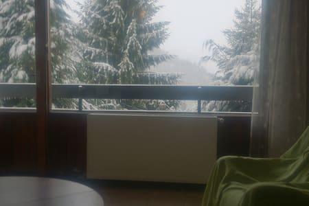48 m2 3 pcs pkg s-sol balcon/terrasse - Eaux-Bonnes - Apartment