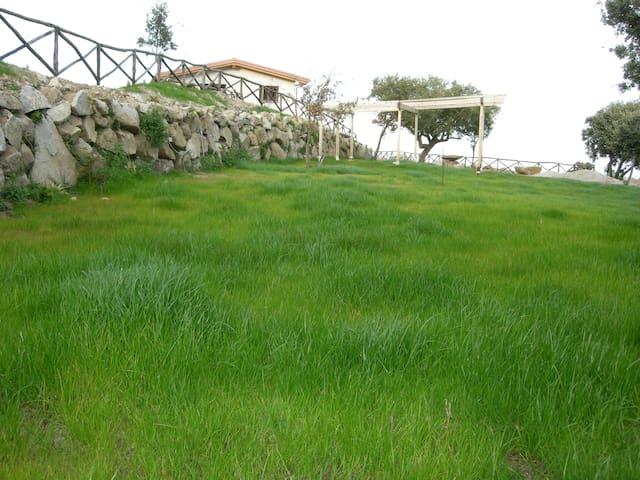 Agricampeggio Verde