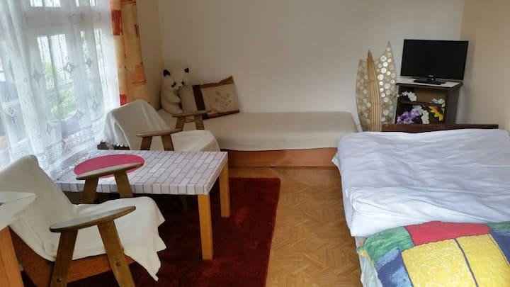 Domek letniskowy w Sobieszewie  /2 łóżka 2 osoby/