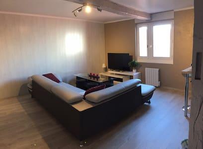 T3 de charme au cœur de Castres - Castres - Apartment