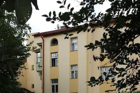 Apartment B41