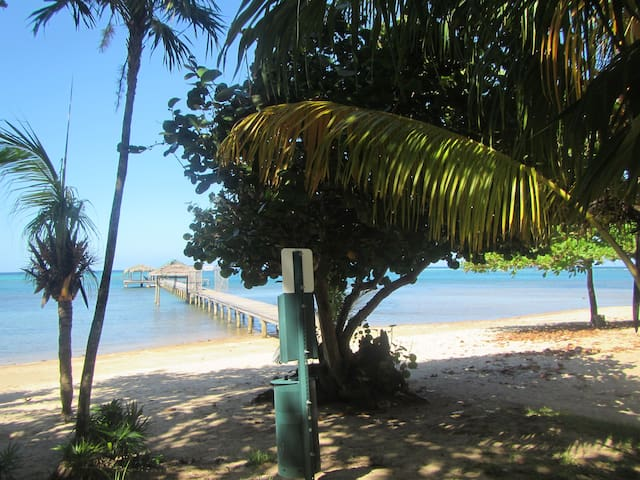 beach and Private Dock- 300mts from the cabin