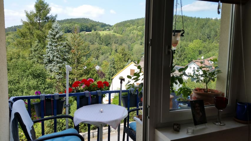 Balkon - Blick auf den Hohen Sachsen