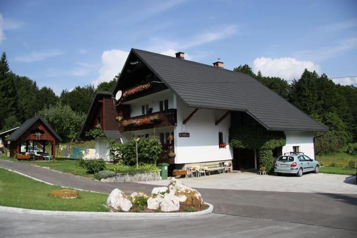 Room 1 Cerkovnik Bohinj Lake - Ribčev Laz - Gjestehus