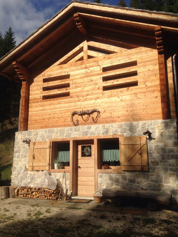 Baita nel bosco delle Dolomiti -Cibiana di Cadore.