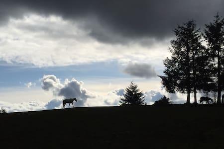 Comfy Horse Ranch Retreat - North Plains - Ház