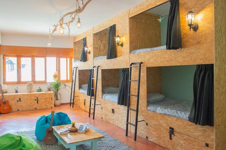 Banana Beach House Eight Bed Dormitory