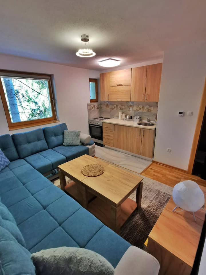 Studio apartment Vlasic