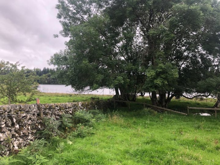 Nearly Wild Camping Loch Side (pitch 3)