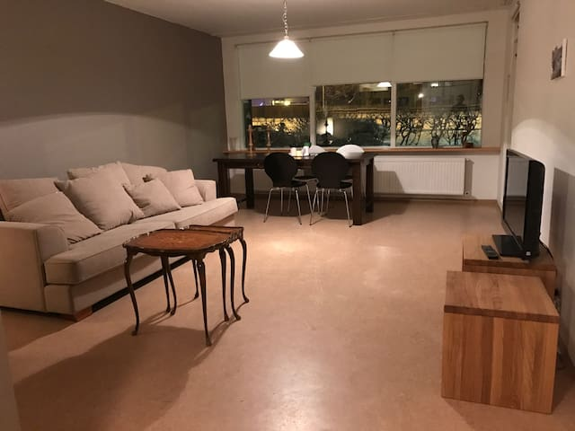 Newly renovated apartment, in Reykjavík - Reiquiavique