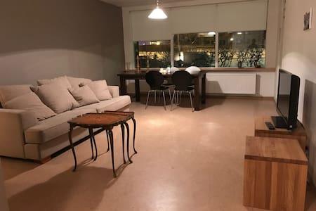 Newly renovated apartment, in Reykjavík - Reykjavik - Appartement
