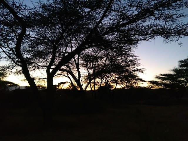 Charming Kudu Camp, Natural hot spa and camp site