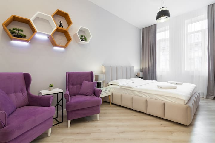Lux apartment on Kulisha 16