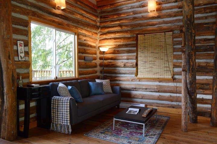 Rustic Cabin on Rural Acreage