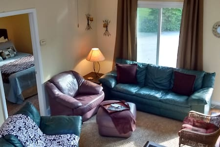 2 Bedroom Apartment Near Downtown GR - Grand Rapids