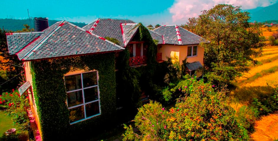 Author's Room in Palampur