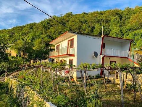 Etno House Mira