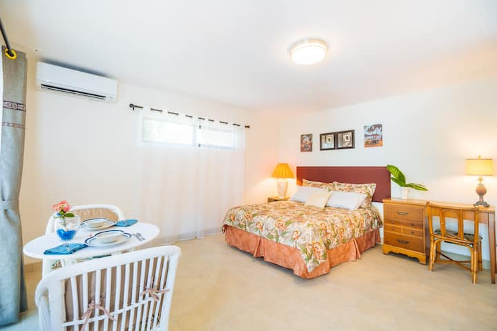 Newly renovated studio close to Waikiki beach