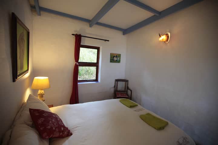 Buccaneers Lodge & Backpackers budget en suite