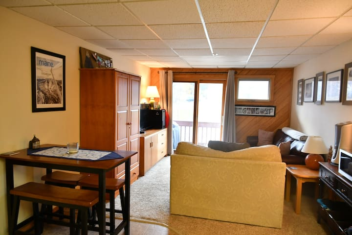 Well Maintained, Ski In Condo w/ Mountain View