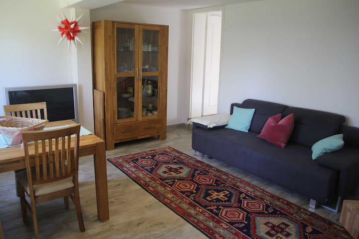 Wohnraum mit optional ausziehbarer Couch.