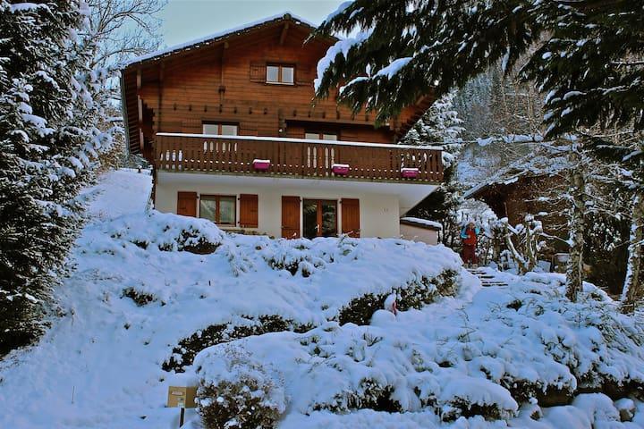 Appartement dans chalet savoyard - Le Petit-Bornand-les-Glières - Wohnung