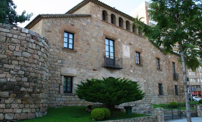Masia Torre Rodona S. X