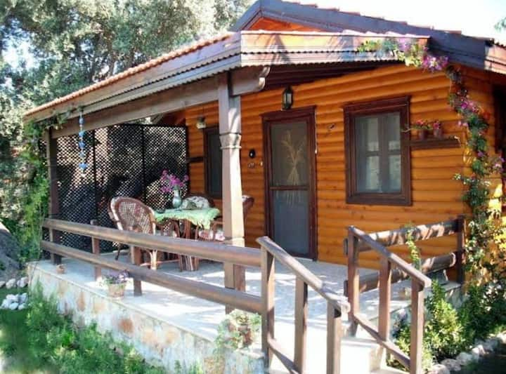 Self-catering 1-bedroom bungalow in Mesudiye