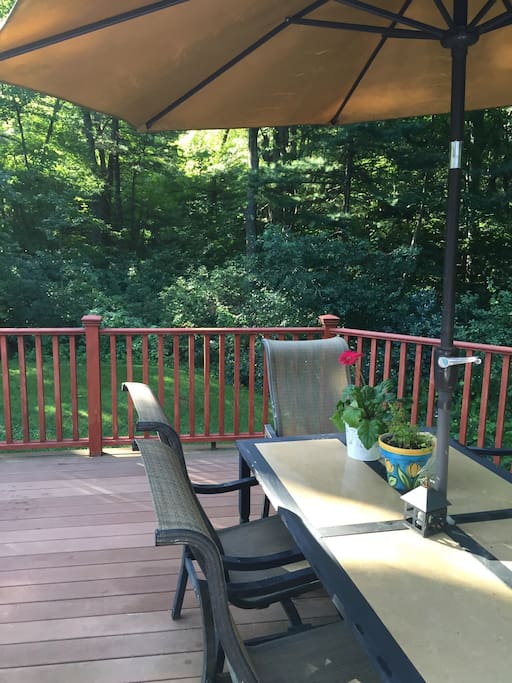 Beautiful outdoor wooded setting with Use of large outdoor patio - patio furniture and use of grill