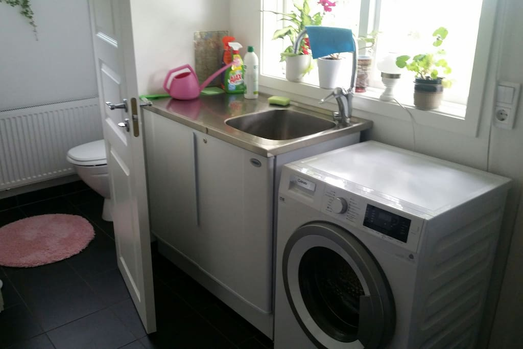The entrance with washing machine and wc