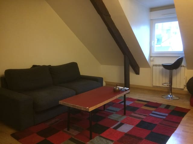 A nice flat and well located - Le Mans - Huoneisto