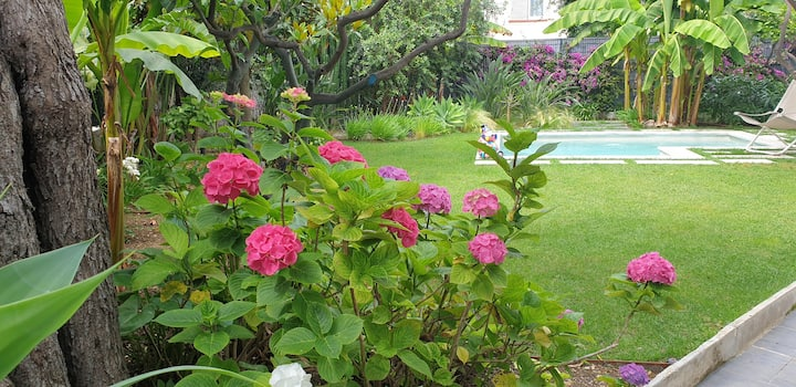 RDJ Villa moderne . Jardin paysager. Wi-fi. Pking.