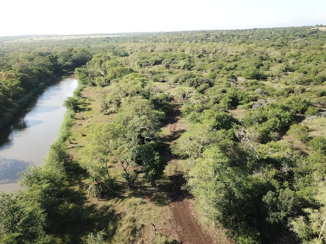 A game walk along the Msinene river