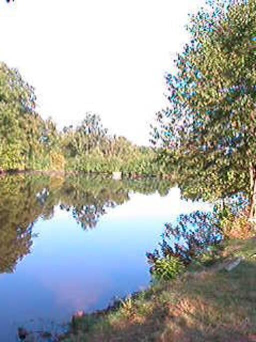 l étang sur un domaine de 15 hectares à 3 km.