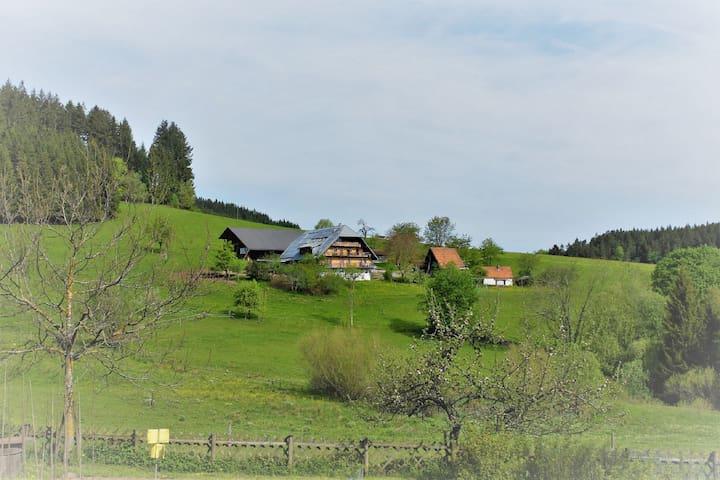 BioHof im Schwarzwald nahe Triberg; FeWo Rusticana