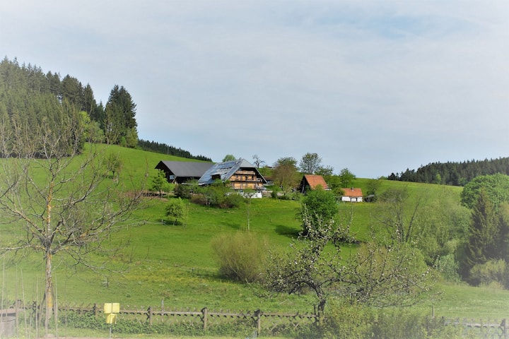Eco Farm in the center of Blackforest near Triberg