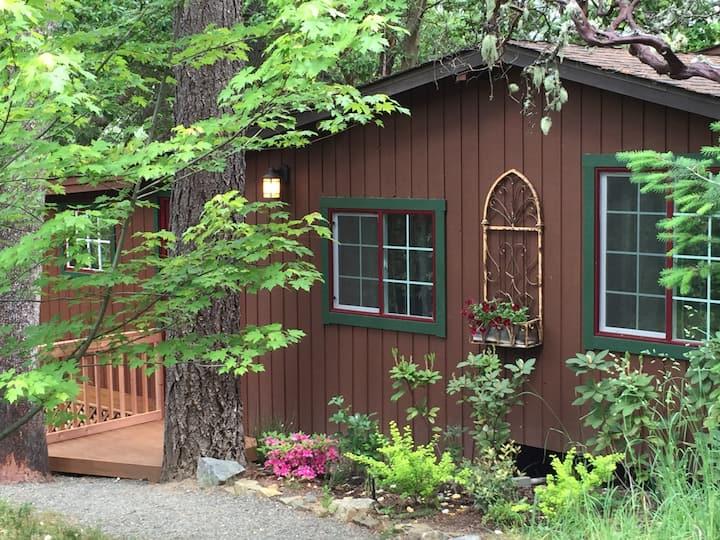 Trinity River Cabin Hideaway