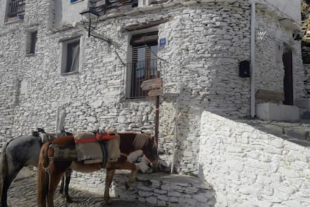 La Casa de la Bombilla verde, an original cottage