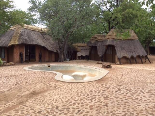 Bush Camping, Transport to/from Vic Falls, Tours