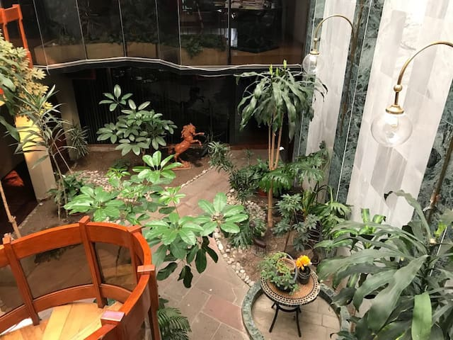 Chic Suite in Spacious House near Coyoacán