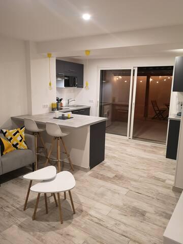 appartement moderne en RDC,plein centre de Gaillac