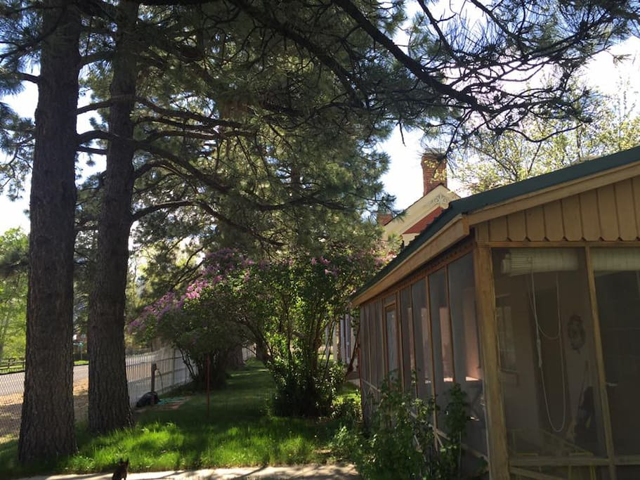 Screened in front porch. Don't forget to smell the Pine Trees! They have different scents!