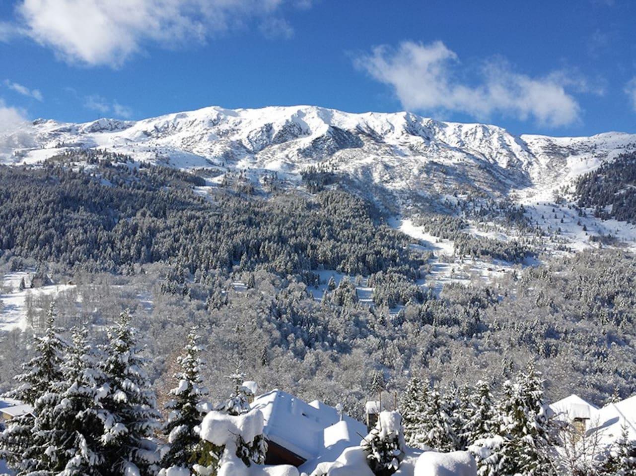 Le Roc de Fer depuis le chalet - View of Roc de fer from the chalet