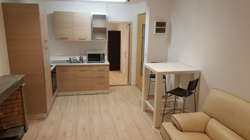 Joli appartement T2 refait à neuf